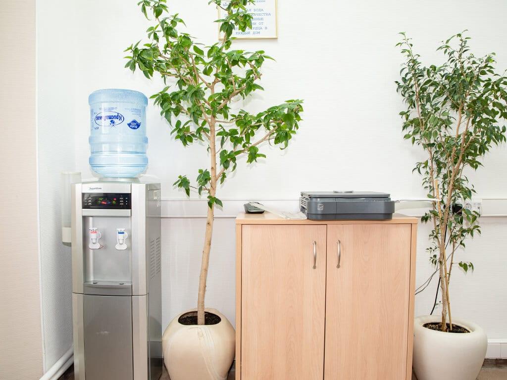 Офисный кулер для воды и растения